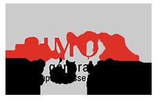 Simox : Générateurs de vapeur basse pression